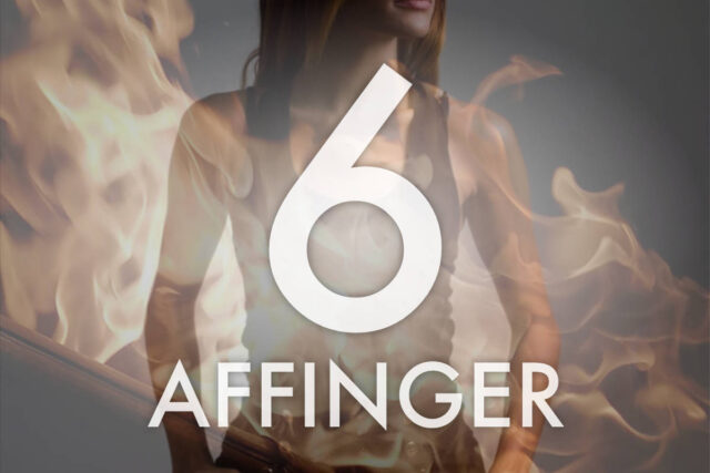 affinger6 ACTION